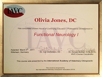 Continuing Education & Professional Development; Functional Neurology I Gained; March 2011 International Academy of Veterinary Chiropractic