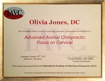 Advanced Animal Chiropractic: Focus on Cervical