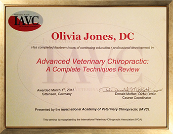 Advanced Veterinary Chiropractic