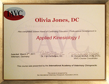 Applied Kinesiology I