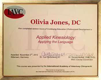 Continuing Education & Professional Development; Applied Kinesiology: Applying the Language