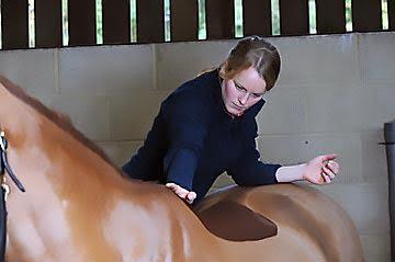 Kent & Sussex Equine Chiropractic