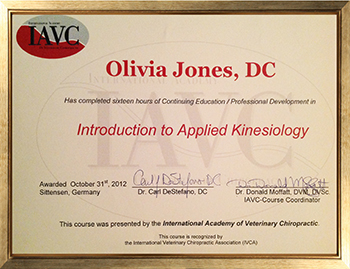 Introduction to Applied Kinesiology