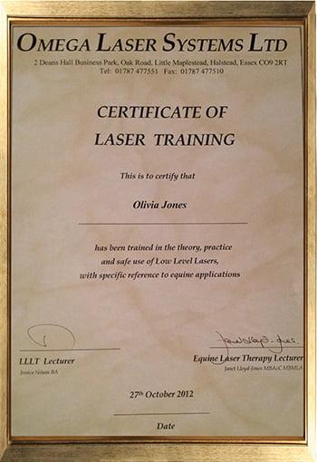LaserTraining